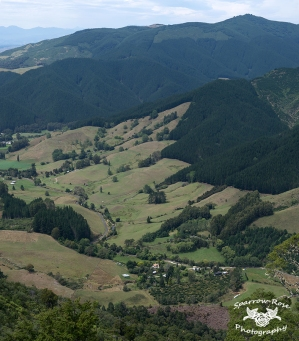 riwaka valley from takaka hill